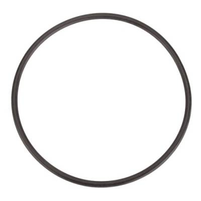 Winters 7474 Seal Plate O-Ring